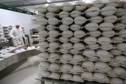 Com queda na produção, Brasil importa maior volume de cacau em 16 anos, diz FCStone