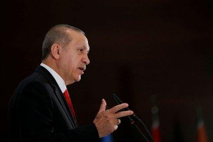 Erdogan hints Turkey may ban some Israeli goods because of Gaza violence: media