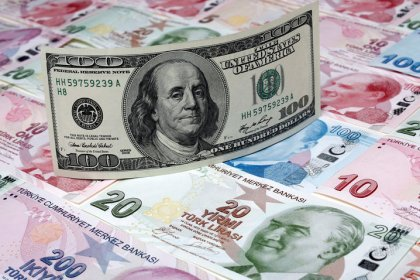 Erdogan calls on Turks to convert dollar, euros into lira
