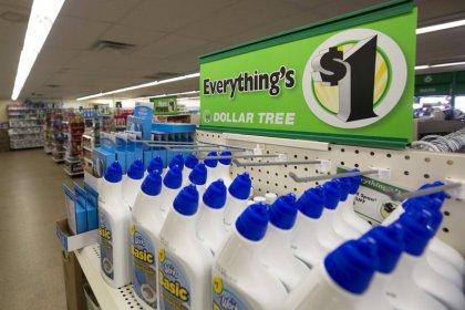 Dollar Tree same-store sales miss estimates, shares fall