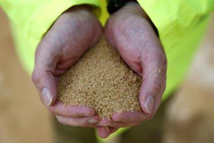 Índia vai exportar açúcar pela 1ª vez em três anos após alta nos preços