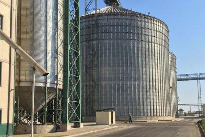 ЭКСКЛЮЗИВ-Украинская аграрная компания Allseeds планирует IPO в ближайшие 4 года