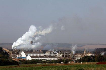 China diz salvaguardas sobre importações de açúcar estão de acordo com as regras da OMC