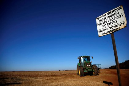 South Africa land prices stable despite uncertainty on land issue - banking group