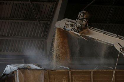 Perda no transporte de milho do Brasil é de 0,1% do total, aponta estudo
