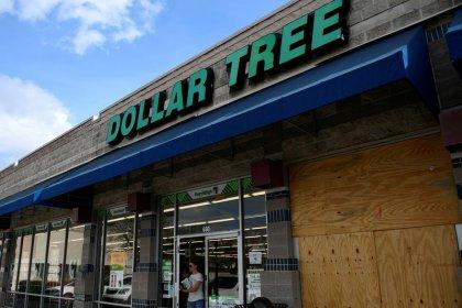 Activist Starboard seeks Dollar Tree board changes, disposal