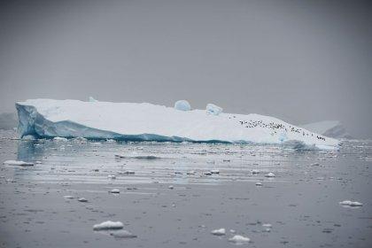 Se acelera deshielo Antártida y crece el riesgo de un alza del nivel del mar: estudio