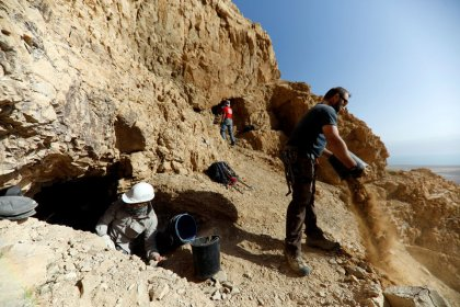 جيل جديد يتولى البحث عن مخطوطات البحر الميت