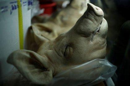 ¿Cerdo contra la polución? Los surcoreanos combaten la contaminación con grasa