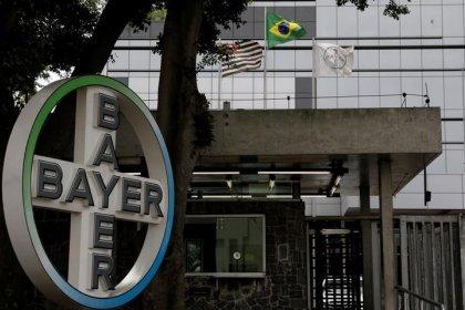 Sojicultores de 10 Estados seguem MT e pedem depósito judicial da Bayer por Intacta