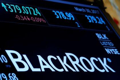 BlackRock will not back Bayer management in AGM vote: sources