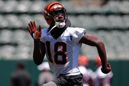 NFL notebook: Bengals' Green has surgery, out Week 1