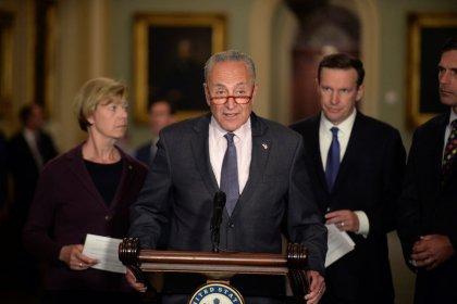 Senate Democrats ask Trump to shift wall money to gun measures