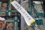 China suspende la importación de camarones desde Ecuador por riesgo de coronavirus