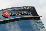 FDA panel votes in favour of approving GSK's multiple myeloma drug