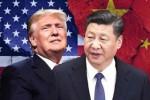 Trung Quốc sắp từ bỏ áp thuế lên các hàng hóa nông nghiệp Mỹ để cứu vớt ZTE?