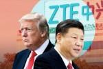 Bộ trưởng Thương mại Mỹ: Washington đang khai thác các biện pháp khắc phục cho lệnh cấm ZTE