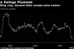 Orange Juice Stuck in Worst Rout in Five Decades as Demand Sinks