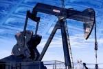 Vì sao giá dầu không tăng quá mạnh sau vụ tấn công vào tàu chở dầu ở Ô-man?
