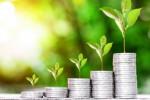 Mengintip Peluang Investasi dan Pembiayaan Ramah Lingkungan di Indonesia