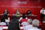 ĐHĐCĐ MSB: Bước chuyển mình lớn trong giai đoạn phát triển mới 2019 – 2023