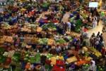 Türkiye'nin Gıda ve Alkolsüz İçecekler Ana Grubu Fiyat Düzeyi Endeksi 70 Oldu