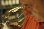 Vinhos Espanhóis: uma diversidade de sabores