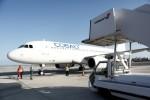 Cobalt Air, principale compagnie chypriote, cesse soudainement ses activités