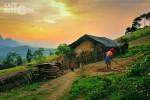 Việt Nam có nguy cơ tụt hậu trong nền kinh tế không tiền mặt