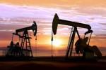 INE原油一度逼近460,EIA库存全面利空;但收盘回补多数跌势,OPEC仍有理由看好来年油价