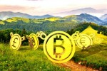 The Race Is On For Asia's Crypto Valley