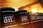 原油交易提醒:沙特试图安抚市场,但难阻美油刷新两周低位,日内关注EIA数据