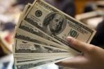 Merkez Bankası Yıl Sonu Doları 5,99 TL Bekliyor