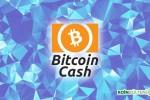 Bitcoin.org Kurucu Ortağı: Bitcoin Cash Öldü, Yakında Değersiz Olacak
