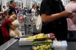 Các siêu thị nước ngoài thay đổi chiến thuật hoạt động tại thị trường Trung Quốc