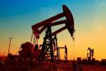 """国际油价转跌,尽管疫情继续打压能源需求前景,而OPEC已经顾不上""""吃相""""了"""
