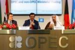 OPEC维也纳会议强势来袭,3种可能性解析油市走向