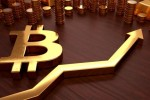 Has Bitcoin's Price Really Bottomed out? Trio of Experts Discuss