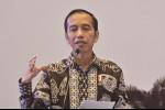 Jokowi Minta Petani Jambi Perbanyak Produksi Manggis