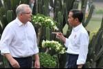 Perjanjian Perdagangan Bebas Australia-Indonesia Ditunda, Relokasi Kedutaan ke Yerusalem Jadi Pemicu