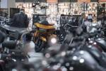 U.S. to Reciprocate on 'Unfair' EU Harley Tariffs, Trump Says