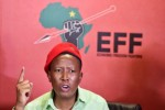 Afriforum granted order to seize Malema and EFF's assets