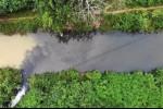 Bắt 2 nghi phạm đổ dầu thải ra nguồn nước sông Đà