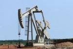 Les Bourses du Golfe chutent avec la dégringolade des cours du brut
