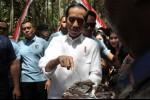 Jokowi Borong Produk Petani Jambi, Apa Saja?