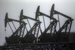 Petrolio: chiude in netto calo a Ny