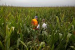 White House Weighs Moves to Blunt Farmer Fallout on Biofuel