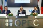 OPEC verwacht minder sterke olievraag