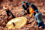 Bitmain's Newest ASIC Can Mine Bitcoin Gold, Zcash