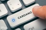 Ra mắt Cardano 1.4 – Bản cập nhật thay đổi cách lưu trữ và quản lý dữ liệu